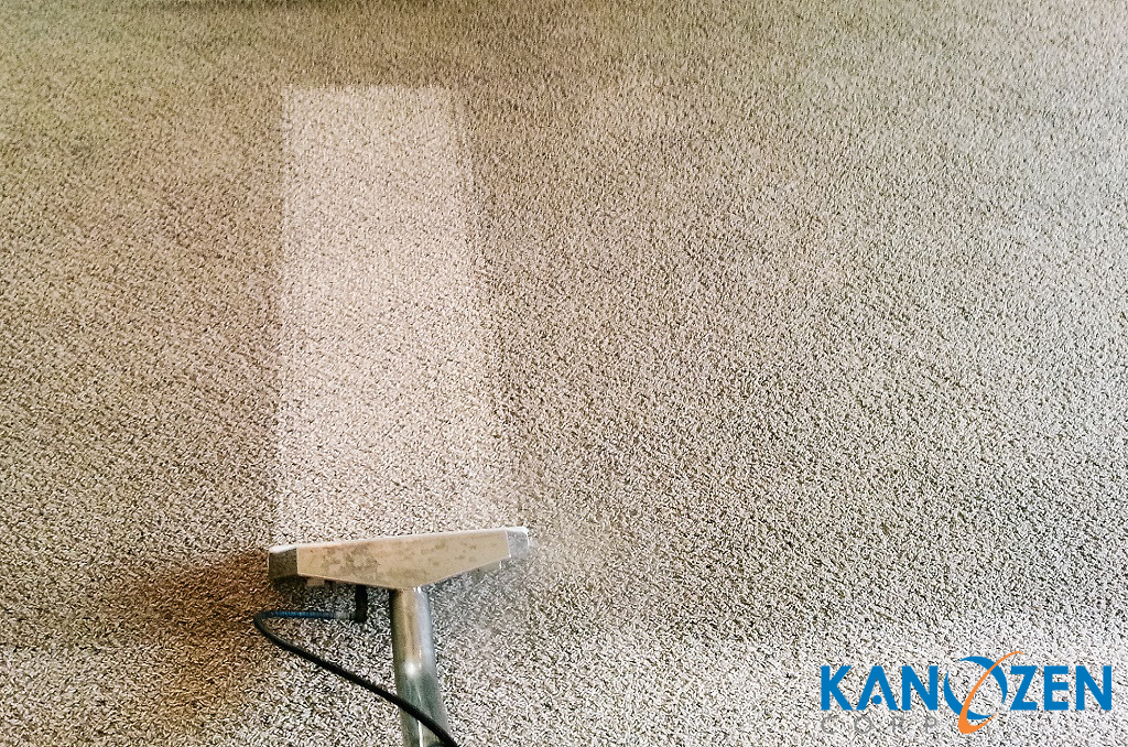 Carpet Cleaner Buying Guide 1